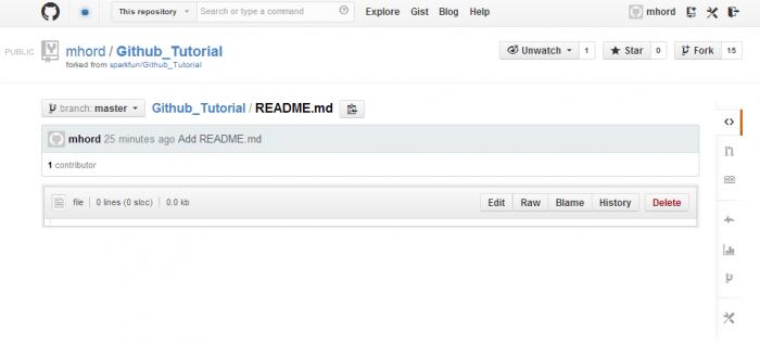 GitHub web-based file viewer